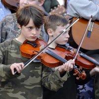 Fiddler kids mitchell